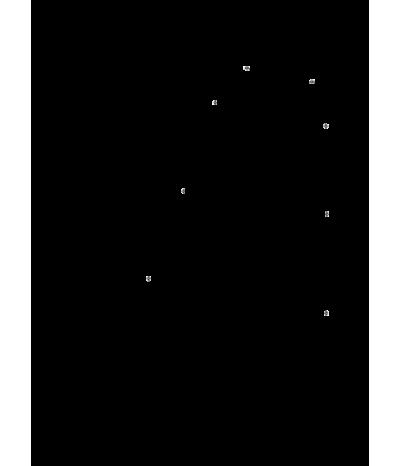 Хромотерапия Звездный дождь 8: